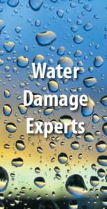 Water Damage Restoration Dryallusa Com